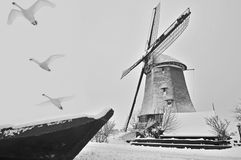 Swans fly away. With windmill at background Stock Photos