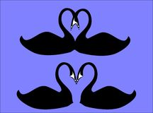 Swans kissing on blue Royalty Free Stock Photos