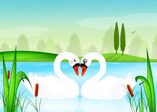 Swans in the lake. Illustration of swans in love Royalty Free Stock Photos
