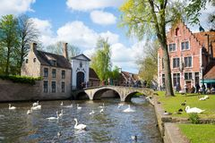 Swans in lake of love in Bruges, channel panoramic view near Begijnhof Stock Photography