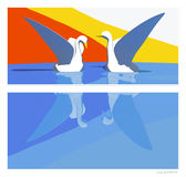 Swans of life. Looks at another, but feels not what the other thinks about Stock Image