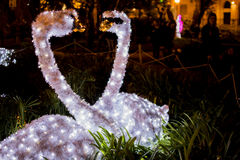Swans of lights in Salerno Stock Images