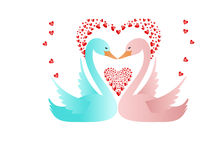 Swans in love Stock Photography