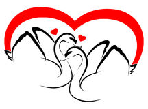 2 swans in love Royalty Free Stock Image