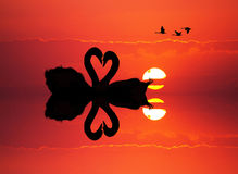 Swans in love at sunset. Illustration of swans in love at sunset Royalty Free Stock Photography
