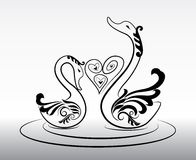 2 swans in love vector in eps10 Royalty Free Stock Photos