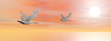 Swans migration - 3D render Royalty Free Stock Photo