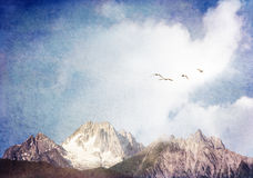 Swans and Mountains Royalty Free Stock Image