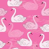 Swans. Seamless pattern. Template for design Royalty Free Stock Photo