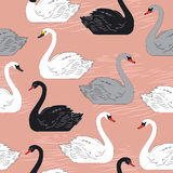Swans. Seamless vector pattern. Template for Royalty Free Stock Photos