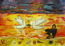Swans at sunset Stock Images