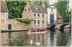 Bruges, Belgium. The swan place near beguinage. Swans swimming in the canal of Bruges ,Belgium near the Bruges` beguinage royalty free stock photography