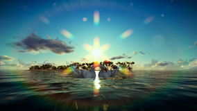 Swans on water with tropical island on the background stock footage