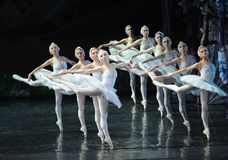 The swans wings-ballet Swan Lake Stock Images