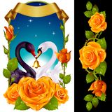 Swans and yellow Roses Stock Image