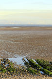 Swansea Bay tidal flats Royalty Free Stock Image