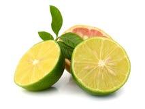 Swapped lemon and lime halves. Background with lemons closeup. Lemons. lemon halves Royalty Free Stock Image