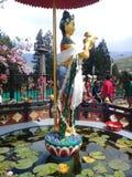 Swarasati богини Стоковая Фотография RF