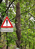 Swarm of bees attention sign. Colorful and crisp image of swarm of bees attention sign Royalty Free Stock Photography