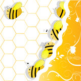 A swarm of bees. In honeycombs Royalty Free Stock Photo