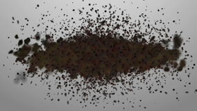 Swarm. Concepts swarm of insects or random motion of particles stock footage