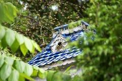 swarming пчелы Стоковая Фотография