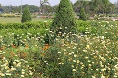 Swarn Jayanti Udyan, Rohini, Nuova Delhi, India immagini stock