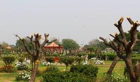Swarn Jayanti Udyan, Rohini, Nuova Delhi, India Immagini Stock Libere da Diritti