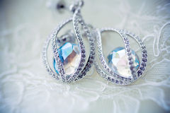 Swarovski rystals. earrings Stock Images
