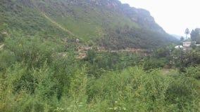 Swat Pakistan Nature. Taken by me in marghuzar Swat Pakistan stock photography