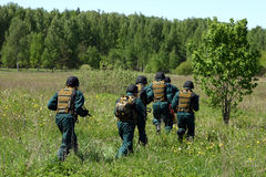 SWAT team on a training. SWAT team on a training in a forest Stock Image