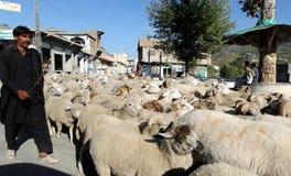 Swat Valley, Pakistan Stock Photography