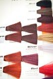 swatch волос краски цвета Стоковая Фотография RF
