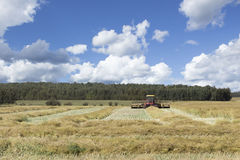 Swather in the field swathing a field under a blue sky with white fluffy clouds floating by. stock image
