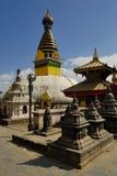 Swayambhunath, de Tempel Kathmandhu van de Aap Royalty-vrije Stock Afbeeldingen