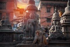 Swayambhunath Stupa foto de archivo libre de regalías