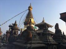 Swayambhunath Stupa, Affe-Tempel in Kathmandu, Nepal Stockbild