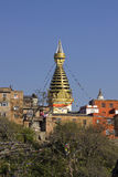 Swayambhunath stupa monkey temple Stock Images