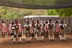 Swazi warriors