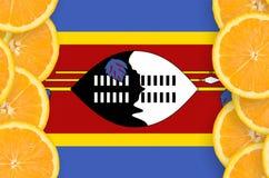 Swaziland flag in citrus fruit slices vertical frame royalty free stock images