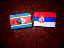 Swaziland flag with Serbian flag on a tree stump isolated. Swaziland flag with Serbian flag on a tree stump stock images
