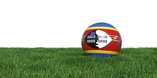 Swaziland flag soccer ball lying in grass Royalty Free Stock Photo