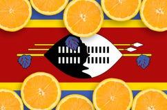 Swaziland flagga i citrusfruktskivahorisontalram arkivbild