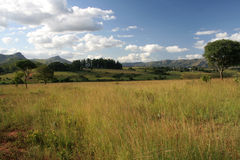 Swaziland Landscape. Beautiful scenery of the Swaziland Landscape Royalty Free Stock Image