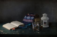 Sweater with deer, candles, books Royalty Free Stock Photo