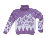 Sweater with deers Stock Image