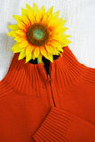 Sweater with sunflower. Concept photograph of a sweater with artificial sunflower Stock Image
