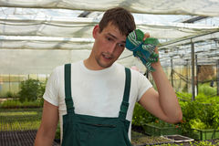 Sweating farmer in greenhouse Royalty Free Stock Images