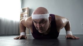 Sweating male with weak arm muscles trying to do push-ups at home, workout. Stock footage Royalty Free Stock Photography