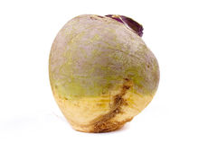 Swede or Turnip Royalty Free Stock Photo